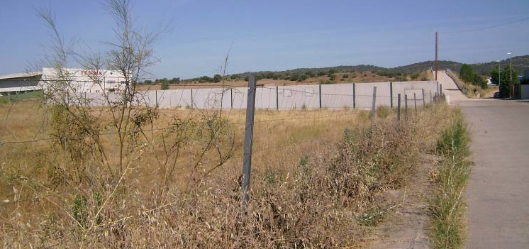 La crisis del coronavirus se ceba con la España desconectada