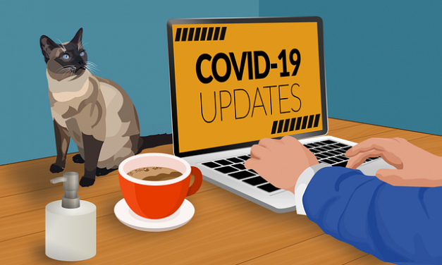 TELEFÓNICA | XXVIII Comisión de seguimiento de la COVID-19